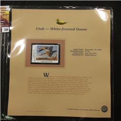 544.1996 Utah-White-fronted Goose $5.00 Duck Stamp, Pristine, mint condition in original folio as is