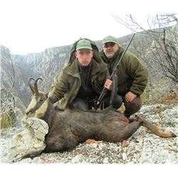 Serbia – Fallow Deer, Roe D\eer or Chamois – Your choice - with Two Touring Days
