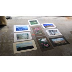 "Qty 9 Photographs: Trees, Misty Rural Scenes (largest is 16"" L x 23"" H)"