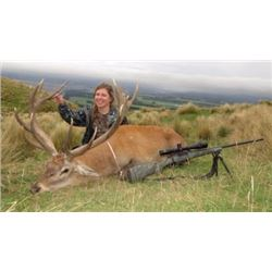 "4 Day New Zealand Red Stag up to 320"" & Chamois Hunt for 2"