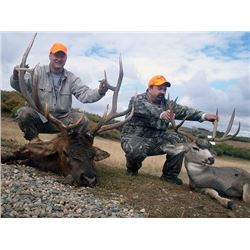 Colorado 2nd or 3rd Season Deer Elk Combo Hunt