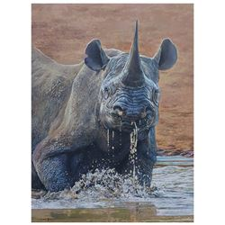 """30"""" x 40"""" Original Acrylic Painting on Canvas by Dawie Fourie"""