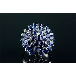Sterling Silver 6.0ct Sapphire Cluster RingCRV$850