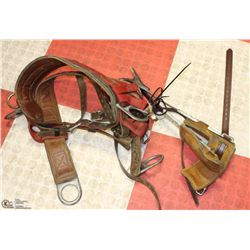 LINEMAN POWER POLE/TREE CLIMBING SPURS WITH BELT