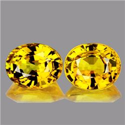 Natural Golden Yellow Pair 1.00 Cts - VVS