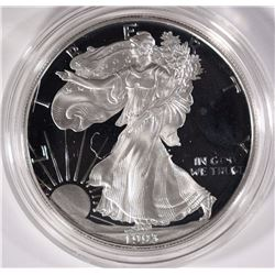 1993 PROOF AMERICAN SILVER EAGLE