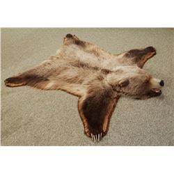 "Grizzly Bear rug, 74""l x 65""w"