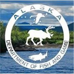 Alaska: Tok Management Area Govenor's Tag for Dall Sheep (DS102/DS103) for One Hunter
