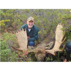 Moose Hunt in Newfoundland