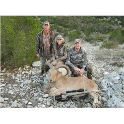 2 1/2 Day Aoudad Hunt for one person in Carta Vallet, TX