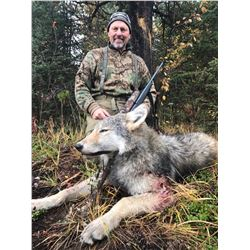 7 Day Remote Wolf Hunt