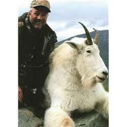 10 Day Mountain Goat Hunt