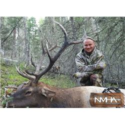 New Mexico Archery Elk Hunt for Two Hunters
