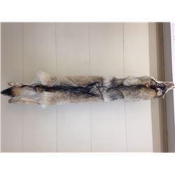 The Minnesota Trappers Association has donated a beautiful Wolf Pelt - 100% of Proceeds of this item