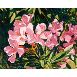 Robert Daughters | Oleander Color