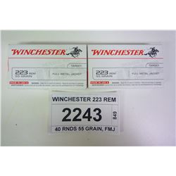 WINCHESTER 223 REM