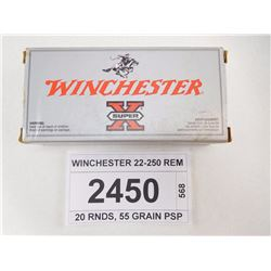 WINCHESTER 22-250 REM