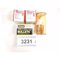 ASSORTED .22 CAL BULLETS