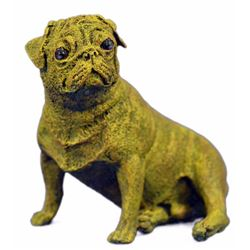 Yellow Patina Pug Bronze Figurine