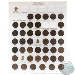 1876-1920 Canada Large cent Collection in a custom hard plastic capital holder. You will receive one