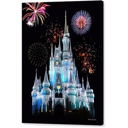 Disney Magic Kingdom Castle Print on Canvas