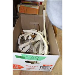 Box of Animal Antlers