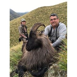 5 Day Tahr Hunt for 2 in New Zealand