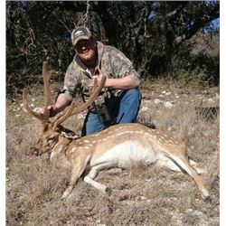 4 Day Axis Deer Hunt for 1 Hunter in Texas