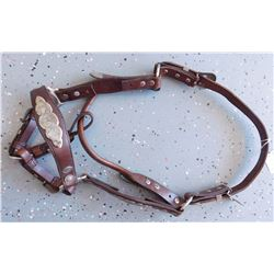 Silver Horse Headstall