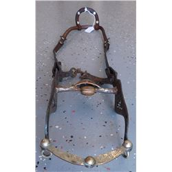 Silver Horse Bridle