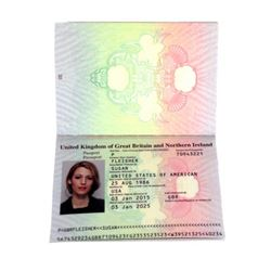 The Age of Adaline Ellis Jones (Michiel Huisman) Passport Movie Props