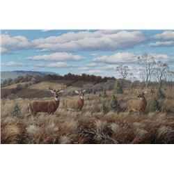 Marcel Bordei, Afternoon watch (White Tailed Deer), Oil Painting
