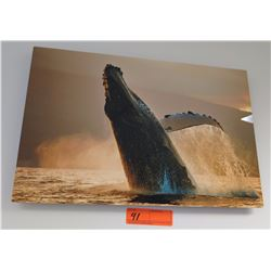 """Wall Art - Photo of Humpback Whale on Canvas, Signed, Approx, 12"""" x 18"""""""