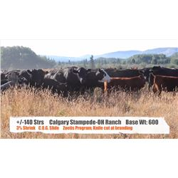 Western Canadian Fall Classic Video Sale Session 1