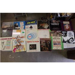Lot of LP Records (16)
