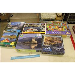 Lot of Assorted Puzzles (6)