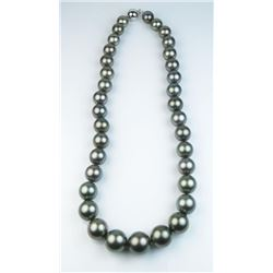 Important Natural Tahitian South Sea Pearl  necklace  graduating from 10.00 MM to 14.00  MM in diame