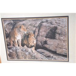 """Framed and triple matted color print of Lions  in rocks  by Alan M. Hunt (1989),  approximately 33"""""""
