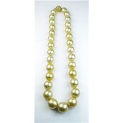 Very Important captivating strand of Golden  Tahitian South Sea Pearls averaging 12.00 MM  to 16.00