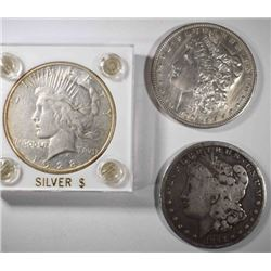 MORGAN DOLLAR LOT: