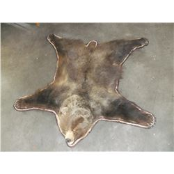 "Grizzly Bear Rug- Paperwork- Nose to Tail 58""- Across Front Legs 72""- Across Back Legs 68""- Double M"