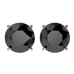 3.18 CTW Fancy Black VS Diamond Solitaire Stud Earrings 10K Rose Gold - REF-80R9K - 36698