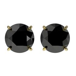 2 CTW Fancy Black VS Diamond Solitaire Stud Earrings 10K Yellow Gold - REF-49R6K - 33085