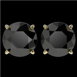 4 CTW Fancy Black VS Diamond Solitaire Stud Earrings 10K Yellow Gold - REF-96Y9N - 33136