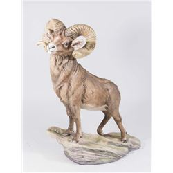 Boehm Limited Issue Big Horn Sheep