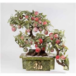 Large Jade Tree