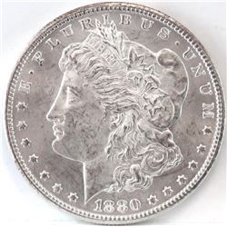 1880 CC Morgan Dollar - VAM 7 - 8/7 Dash.