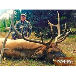 New Mexico Archery Elk Hunt for 2x Hunters