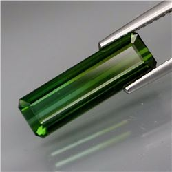 Natural Green Tourmaline  4.04 Cts