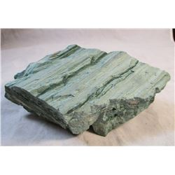 RARE Blue Teal Petrified Wood From South Dakota